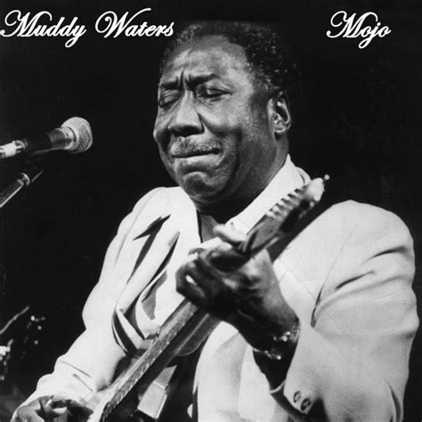 Everything Gonna Be Alright, a song by Muddy Waters on Spotify