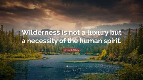"""Edward Abbey Quote: """"Wilderness is not a luxury but a"""