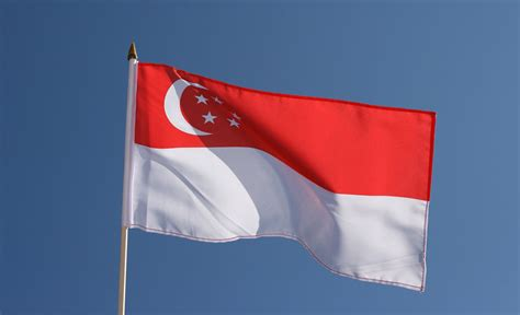 Visit from Singapore in March - join our meeting – NCE